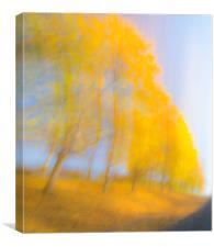 Autum Colours, Canvas Print