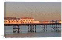 Starlings over Brighton Pier, Canvas Print