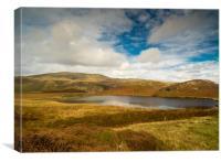 The Bearded Lake - Llyn Barfog, Canvas Print