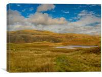Autumn Colurs at the Bearded Lake - Llyn Barfog, Canvas Print