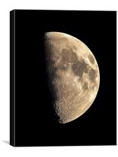 The Moon, Canvas Print