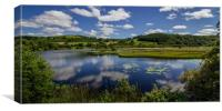 Lillypads and Clouds, Cors Caron, Ceredigion Wales, Canvas Print