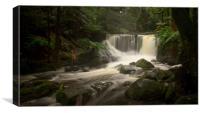 Horseshoe Falls, Mt Field National Park, Tasmania , Canvas Print