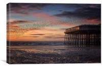 Murmation of Starlings at Blackpool, Canvas Print