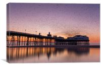 Starlings swarming over Blackpool north pier, Lanc, Canvas Print