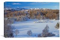 Tarn Hows Snows, Canvas Print