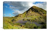 The Bluebells of Rannerdale, Canvas Print