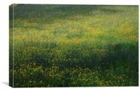 Flowers by the valley, Canvas Print