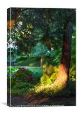 Secret garden, Canvas Print