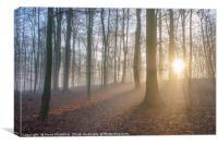 Winter rays, Canvas Print