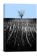 single tree in field, Canvas Print