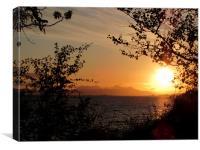 Golden Sunset                        , Canvas Print