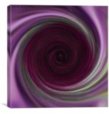 Purple Swirl, Canvas Print