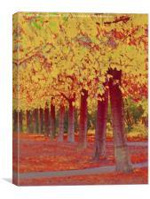 Faux Autumn, Canvas Print