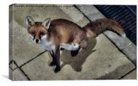 Foto-Me-Fox, Canvas Print