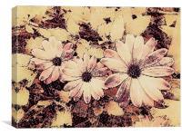 Kitsch Pink Daisies, Canvas Print