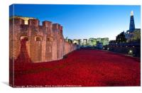 Tower of London and Poppies at Dusk, Canvas Print