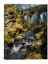 healey dell viaduct, Canvas Print
