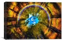 rainbow eye of the forest, Canvas Print