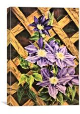 Clematis painting, Canvas Print