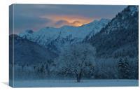 Winter's Dawn, Canvas Print