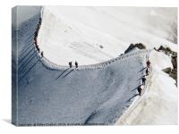 Snow Trek, Canvas Print