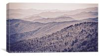 Great Smoky Mountains National Park in Springtime, Canvas Print