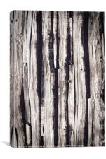 Old Weathered Wood, Canvas Print