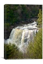 Blackwater Falls, West Virginia, Canvas Print