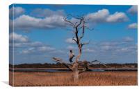 Dead Tree. Snape, Suffolk, UK., Canvas Print