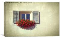 Rustic Geranium Window Box., Canvas Print