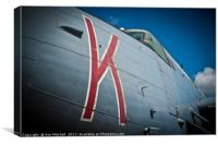 Avro Shackleton, Canvas Print