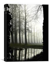 River in the Mist Bintree Mill Norfolk, Canvas Print