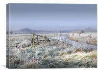 Frosty Morning in Norfolk, Canvas Print
