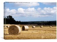 Cornfield Harvested North Norfolk, Canvas Print