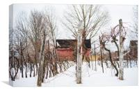 Hibernating Winter Winery, Canvas Print
