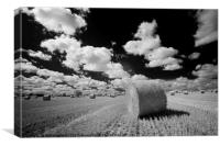 Straw Bale - Barleylands, Canvas Print