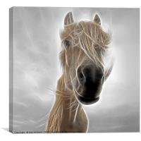 Mystic Horse, Canvas Print