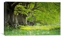 Kingston Lacy in the Spring, Canvas Print