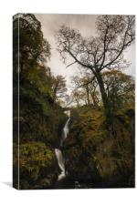 Aira Force Falls Lake District, Canvas Print