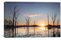 Arcot Lake, Northumberland, Canvas Print