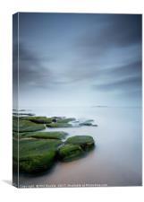 Coquet Island, Canvas Print