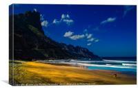 A walk by the beach, Canvas Print