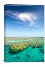 Great Barrier Reef, Canvas Print