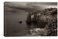 Isle of May Sea cliffs, Canvas Print