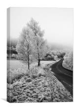 Frosty Road to no where, Canvas Print