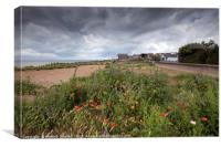 Wild Flowers on West Beach, Whitstable, Canvas Print