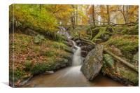 Nant Gwyllt Waterfall Autumn touches, Elan Valley, Canvas Print