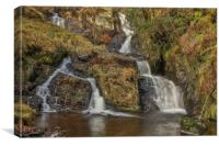 Secret Falls, Elan Valley, Canvas Print