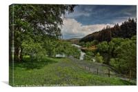 Bluebell Meadow to Penygarreg Dam, Canvas Print